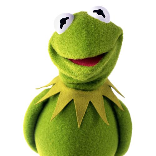 Kermit the Week