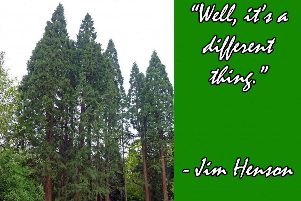 Different Thing Jim Henson