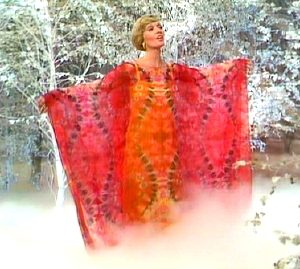 tms-florence-henderson-butterfly