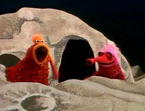 tms-koozebane-galley-oh-hoop-hoop