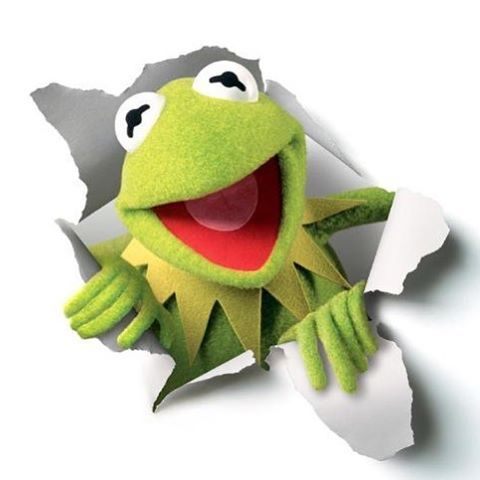 My Favorite Muppet of the Moment – Kermit the Frog
