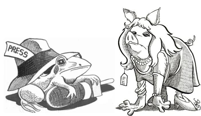 The Book I Never Wrote: The Secret Origins of Tough Pigs